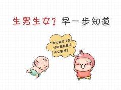 为什么去做香港DNA鉴定男女是大多数妈妈的第一