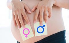 怀孕短时间内通过香港Y-DNA验血得知胎儿性别真的