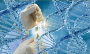 香港无创DNA检测能不能筛查基因遗传疾病?