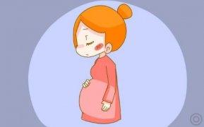 关于胎儿性别鉴定香港验Y查染色体准确率最高!