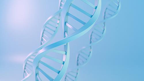 预防新生儿出生缺陷,选择香港无创DNA产前检测